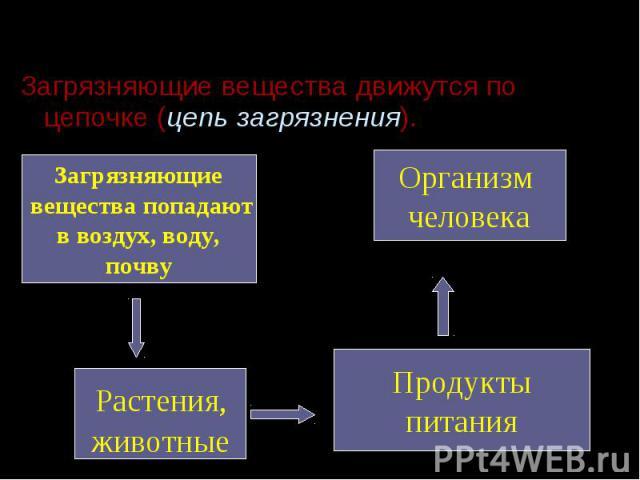 Загрязняющие вещества движутся по цепочке (цепь загрязнения). Загрязняющие вещества движутся по цепочке (цепь загрязнения).