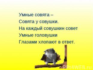 Умные совята – Совята у совушки. На каждый совушкин совет Умные головушки Глазам