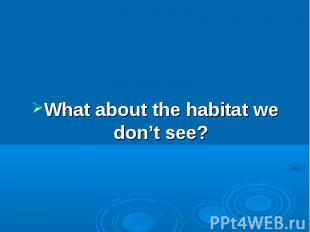 What about the habitat we don't see?