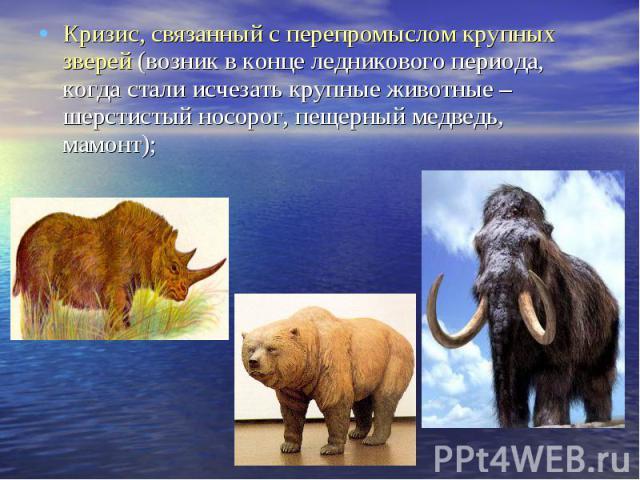 Кризис, связанный с перепромыслом крупных зверей (возник в конце ледникового периода, когда стали исчезать крупные животные – шерстистый носорог, пещерный медведь, мамонт); Кризис, связанный с перепромыслом крупных зверей (возник в конце ледникового…