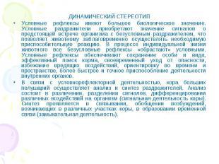 ДИНАМИЧЕСКИЙ СТЕРЕОТИП ДИНАМИЧЕСКИЙ СТЕРЕОТИП Условные рефлексы имеют большое би