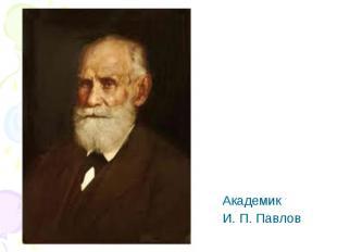 Академик Академик И. П. Павлов