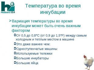 Температура во время инкубации Вариация температуры во время инкубации может быт