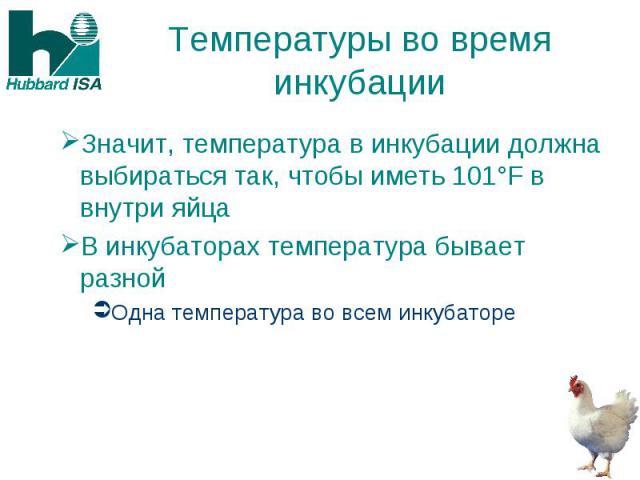 Температуры во время инкубации Значит, температура в инкубации должна выбираться так, чтобы иметь 101°F в внутри яйца В инкубаторах температура бывает разной Одна температура во всем инкубаторе