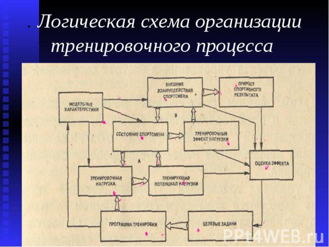 . Логическая схема организации тренировочного процесса