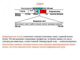 Инфракрасная часть солнечного спектра (тепловые лучи) с длиной волны более 750 н