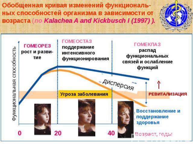 Обобщенная кривая изменений функциональ-ных способностей организма в зависимости от возраста (по Kalachea A and Kickbusch I (1997