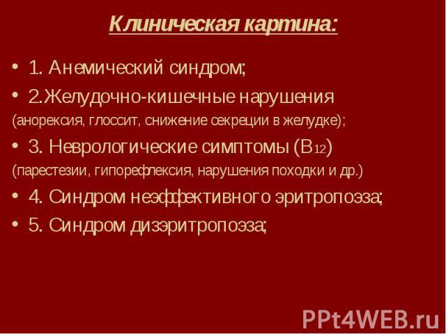 Клиническая картина: 1. Анемический синдром; 2.Желудочно-кишечные нарушения (анорексия, глоссит, снижение секреции в желудке); 3. Неврологические симптомы (В12) (парестезии, гипорефлексия, нарушения походки и др.) 4. Синдром неэффективного эритропоэ…
