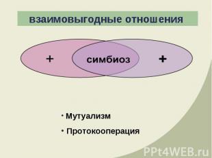 взаимовыгодные отношения