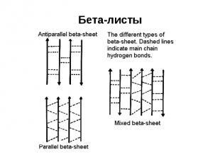 Бета-листы