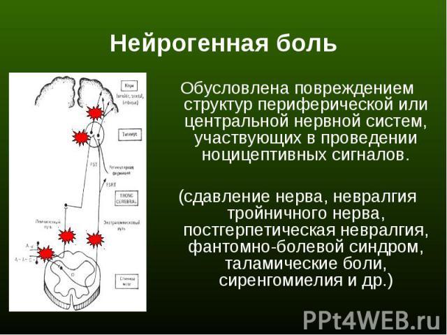 Обусловлена повреждением структур периферической или центральной нервной систем, участвующих в проведении ноцицептивных сигналов. Обусловлена повреждением структур периферической или центральной нервной систем, участвующих в проведении ноцицептивных…