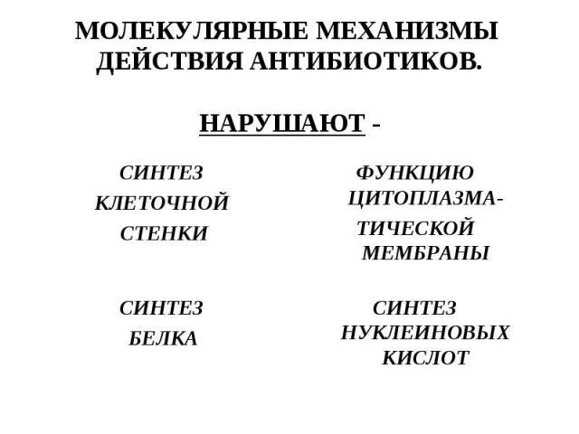 СИНТЕЗ КЛЕТОЧНОЙ СТЕНКИ