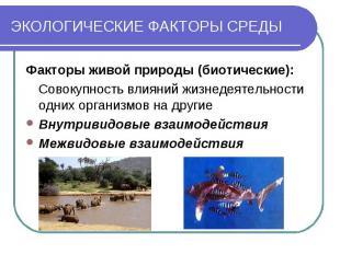 ЭКОЛОГИЧЕСКИЕ ФАКТОРЫ СРЕДЫ Факторы живой природы (биотические): Совокупность вл