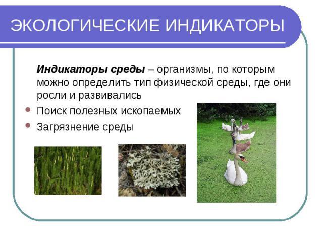 ЭКОЛОГИЧЕСКИЕ ИНДИКАТОРЫ Индикаторы среды – организмы, по которым можно определить тип физической среды, где они росли и развивались Поиск полезных ископаемых Загрязнение среды