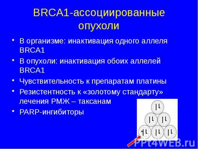 BRCA1-ассоциированные опухоли В организме: инактивация одного аллеля BRCA1 В опухоли: инактивация обоих аллелей BRCA1 Чувствительность к препаратам платины Резистентность к «золотому стандарту» лечения РМЖ – таксанам PARP-ингибиторы