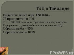 Индустриальный парк Tha Tum – Индустриальный парк Tha Tum – 75 предприятий и ТЭЦ