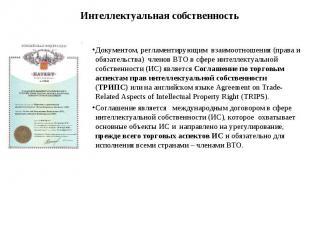 Документом, регламентирующим взаимоотношения (права и обязательства) членов ВТО