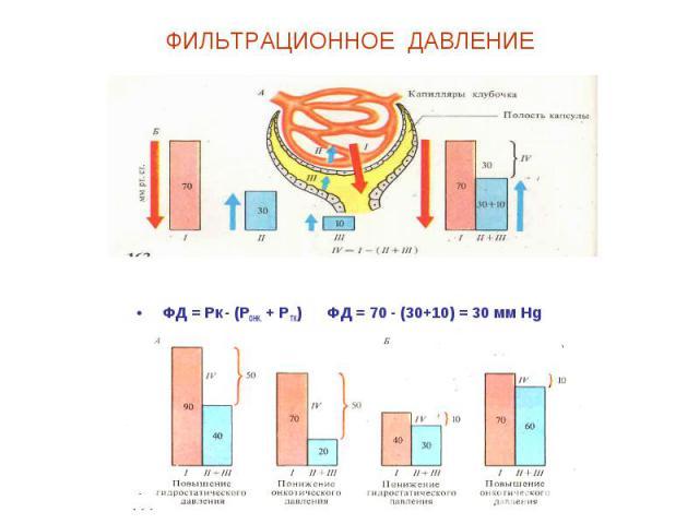 ФИЛЬТРАЦИОННОЕ ДАВЛЕНИЕ ФД = Рк - (РОНК. + РТК) ФД = 70 - (30+10) = 30 мм Hg