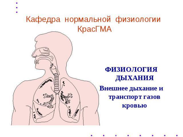 Кафедра нормальной физиологии КрасГМА ФИЗИОЛОГИЯ ДЫХАНИЯ Внешнее дыхание и транспорт газов кровью