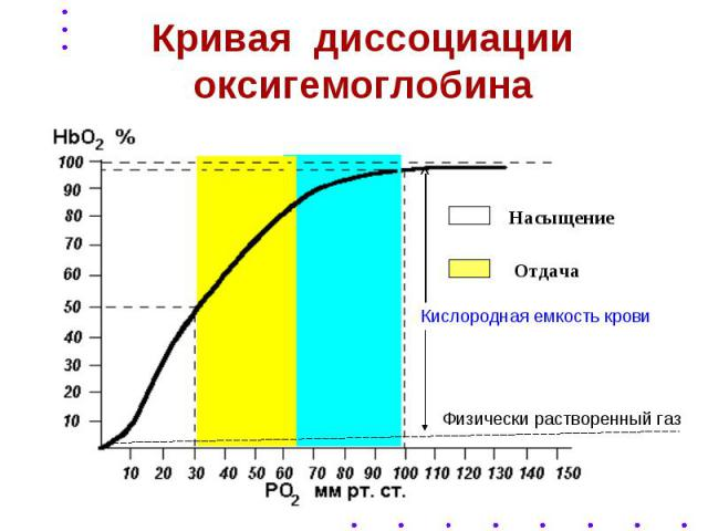 Кривая диссоциации оксигемоглобина
