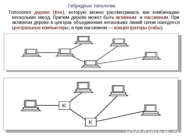 Гибридные топологии. Гибридные топологии. Топология дерево (tree), которую можно рассматривать как комбинацию нескольких звезд. Причем дерево может быть активным и пассивным. При активном дереве в центрах объединения нескольких линий связи находятся…