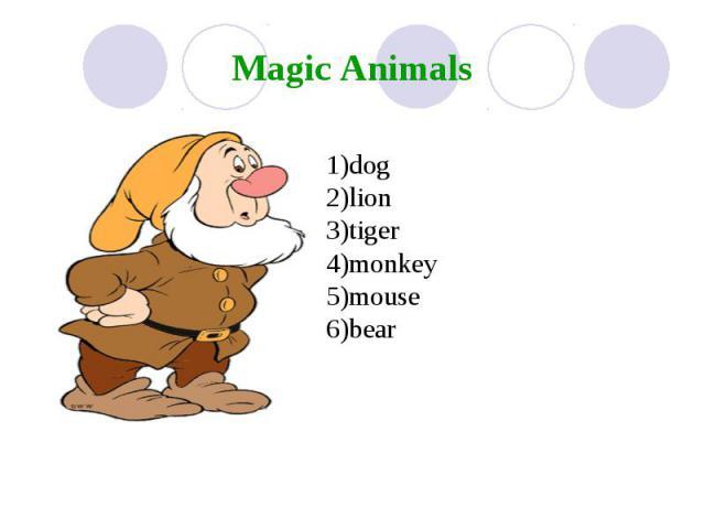 Magic Animals