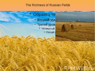 The Richness of Russian Fields