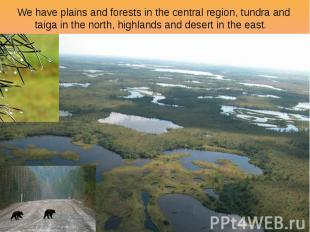 We have plains and forests in the central region, tundra and taiga in the north,