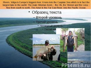 Rivers. Volga is Europe's biggest river. It runs into the Caspian Sea which is i