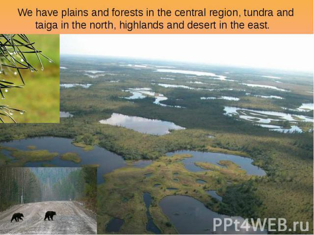 We have plains and forests in the central region, tundra and taiga in the north, highlands and desert in the east.