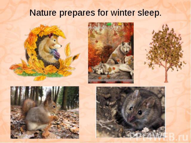 Nature prepares for winter sleep.