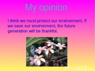 I think we must protect our environment. If we save our environment, the future