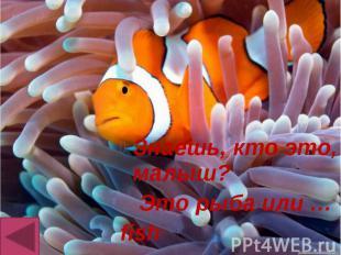 Знаешь, кто это, малыш? Знаешь, кто это, малыш? Это рыба или … fish
