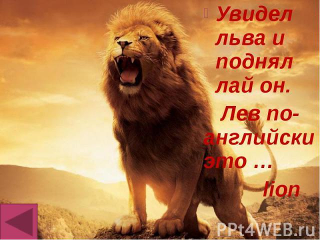 Увидел льва и поднял лай он. Увидел льва и поднял лай он. Лев по-английски это … lion
