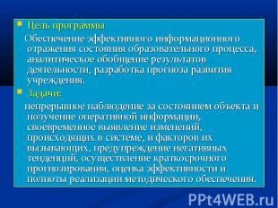 Цель программы Цель программы Обеспечение эффективного информационного отражения