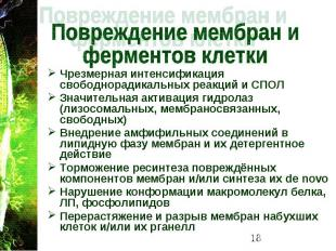 Чрезмерная интенсификация свободнорадикальных реакций и СПОЛ Чрезмерная интенсиф
