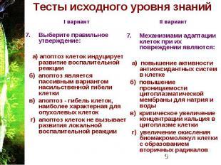 Тесты исходного уровня знаний I вариант Выберите правильное утверждение: а) апоп
