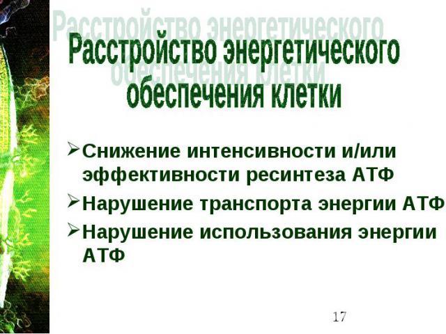 Снижение интенсивности и/или эффективности ресинтеза АТФ Снижение интенсивности и/или эффективности ресинтеза АТФ Нарушение транспорта энергии АТФ Нарушение использования энергии АТФ