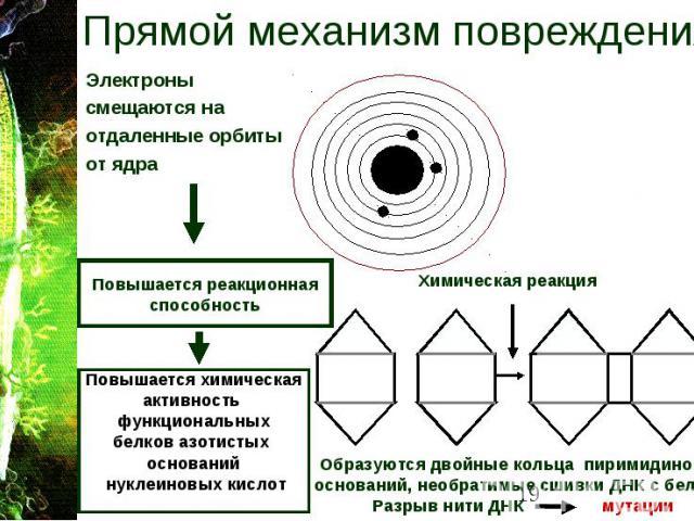 Прямой механизм повреждения Электроны смещаются на отдаленные орбиты от ядра