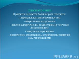 ЭТИОПАТОГЕНЕЗ ЭТИОПАТОГЕНЕЗ В развитии дерматоза большая роль отводится: - инфек