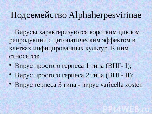 Подсемейство Alphaherpesvirinae Вирусы характеризуются коротким циклом репродукции с цитопатическим эффектом в клетках инфицированных культур. К ним относятся: Вирус простого герпеса 1 типа (ВПГ- I); Вирус простого герпеса 2 типа (ВПГ- II); Вирус ге…