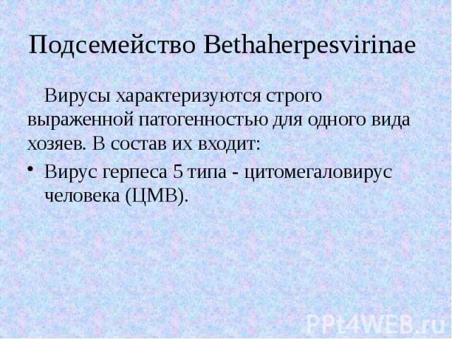Подсемейство Bethaherpesvirinae Вирусы характеризуются строго выраженной патогенностью для одного вида хозяев. В состав их входит: Вирус герпеса 5 типа - цитомегаловирус человека (ЦМВ).