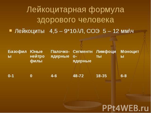 Лейкоцитарная формула здорового человека Лейкоциты 4,5 – 9*109\Л, СОЭ 5 – 12 мм\ч