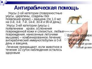Антирабическая помощь Укусы 2-ой категории (поверхностные укусы, царапины, ссади