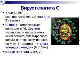 Вирус гепатита С Альтер (1978) – посттрансфузионный «ни А ни В» гепатит. В 1988