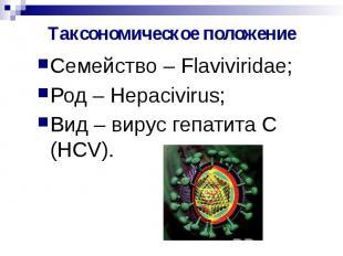 Таксономическое положение Семейство – Flaviviridae; Род – Hepacivirus; Вид – вир