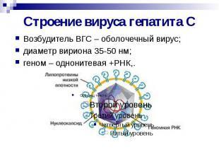 Строение вируса гепатита С Возбудитель ВГС – оболочечный вирус; диаметр вириона
