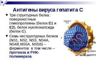 Антигены вируса гепатита С Три структурных белка: поверхностные гликопротеины (б