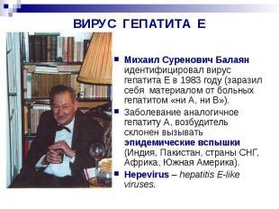 ВИРУС ГЕПАТИТА Е Михаил Суренович Балаян идентифицировал вирус гепатита Е в 1983
