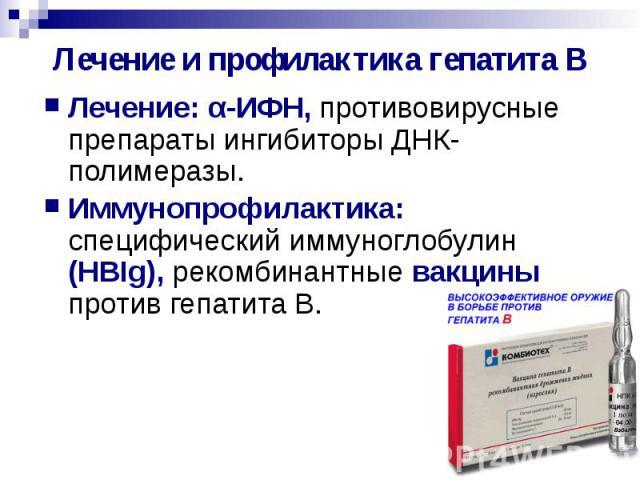 Лечение и профилактика гепатита В Лечение: α-ИФН, противовирусные препараты ингибиторы ДНК-полимеразы. Иммунопрофилактика: специфический иммуноглобулин (HBIg), рекомбинантные вакцины против гепатита В.
